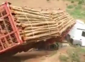 انقلاب شاحنة محملة بالاخشاب