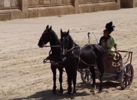 عربة يجرها حصانين